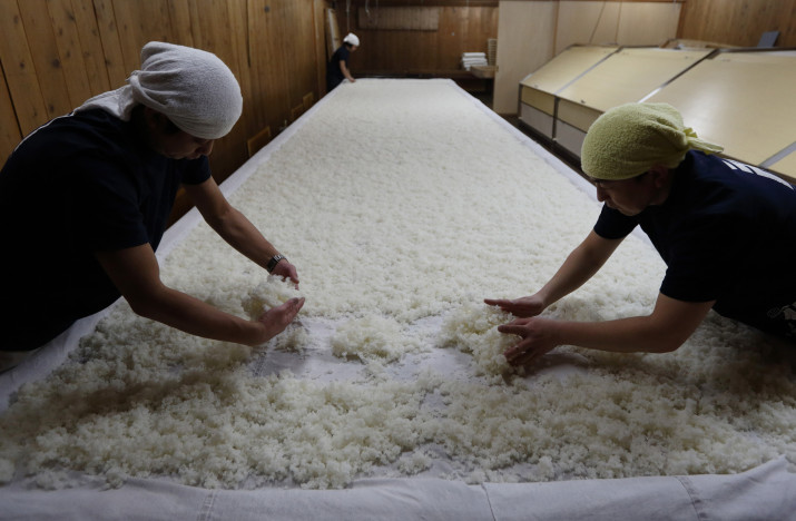 "FUSSA, JAPAN - FEBRUARY 17:  Workers spread steamed rice on a table in a hot room where the rice is treated with a mold called ""koji"" in preparation for brewing sake at the Ishikawa Brewery Co. brewery on February 17, 2016 in Fussa, Japan. The brewery with 153 years history located in the western part of Tokyo produces 230 tons of Japanese sake under the Tamajiman brand a year as Japan's export of agricultural, forestry and fishery products and foods hit record in 2015.  (Photo by Tomohiro Ohsumi/Getty Images)"