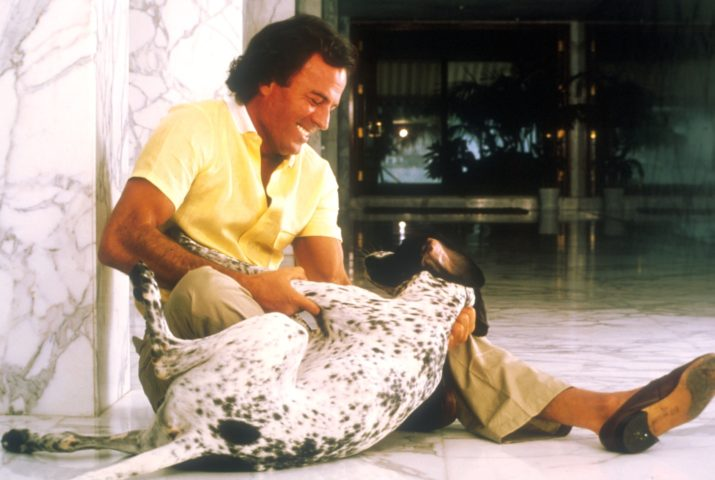 (Julio Iglesias, Hund, spielen, Homestory, Miami, USA, (Photo by Peter Bischoff/Getty Images))